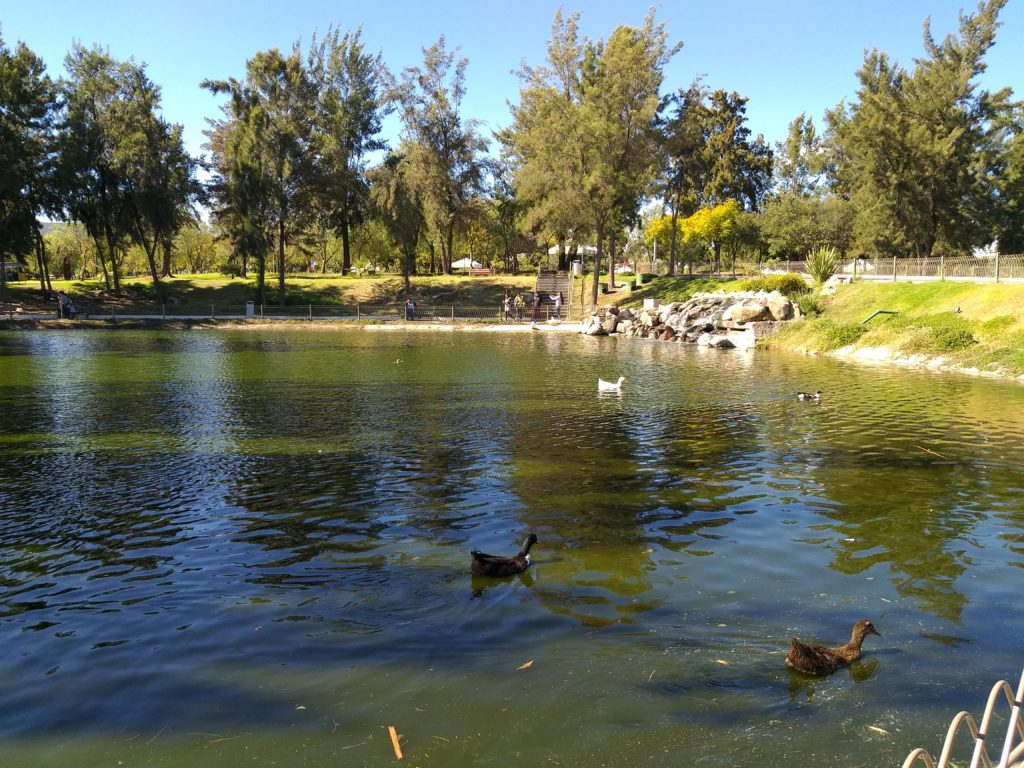 Lago Central del Parque Metropolitano