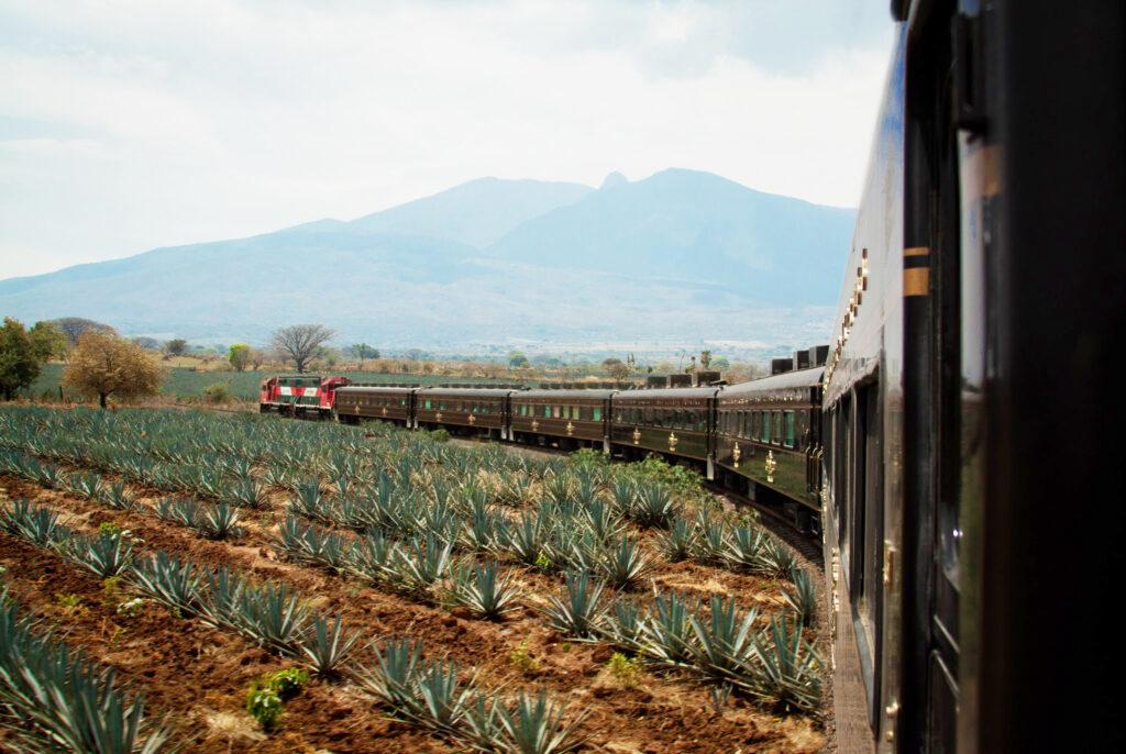 Tren José Cuervo Express